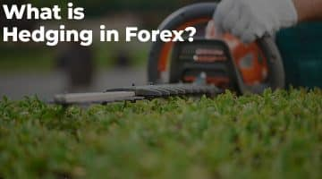 What is Hedging in Forex?