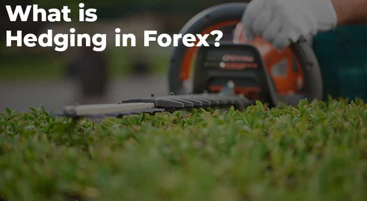 what is hedging in Forex