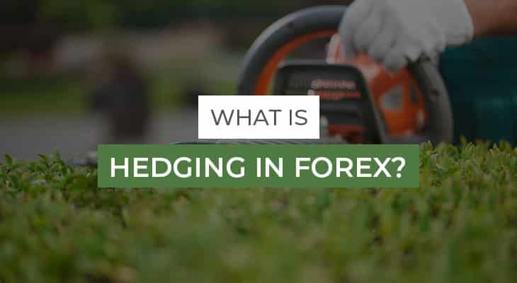what is hedging in forex trading, buy and sell