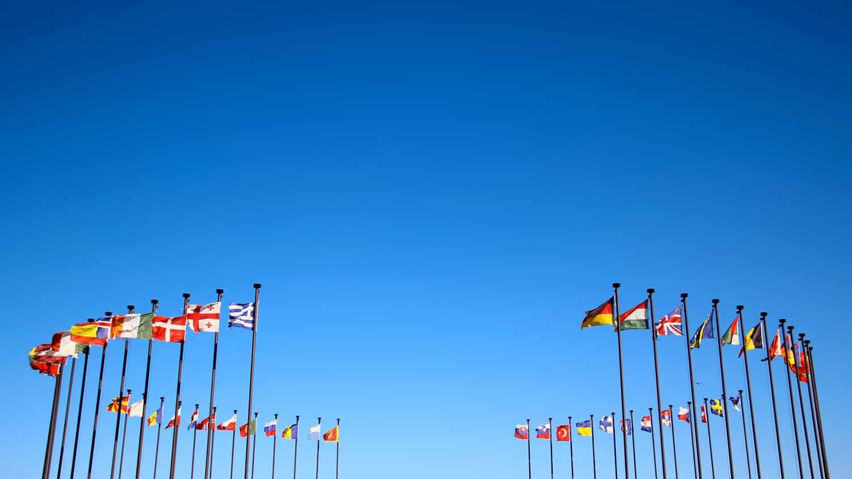 FC-Regulatory-Entity-International-Flags